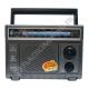 Радиоприемник FEPE FP-1366 СЕРЫЙ