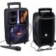 Портативная Bluetooth колонка BK1003 Magic Acoustic Aurora караоке-система чёрный
