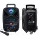 Портативная Bluetooth колонка BK1002 Magic Acoustic BRAVO караоке-система чёрный